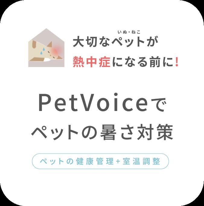 大切なペットが熱中症になる前に!PetVoiceでペットの熱中症対策